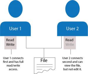 A diagram of file access permissions in a WebDAV protocol environment.
